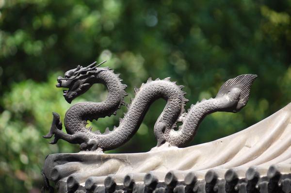 Rồng là một con vật chỉ có trong truyền thuyết, được con người xây dựng lên