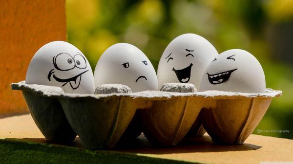 [GMGM] Mơ thấy trứng gà, trứng vịt và 1 điềm báo, mơ thấy trứng ngỗng, trứng rắn, trứng gà đánh con gì may mắn?