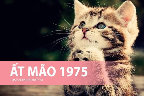 [Ất Mão 1975] Sinh năm 1975 mệnh gì tuổi con gì hợp hướng nào, sinh năm 75 hợp tuổi nào bao nhiêu tuổi?