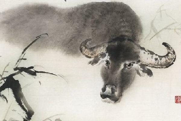 Xem tử vi trọn đời tuổi Đinh Sửu - Nam mạng sinh năm 1997
