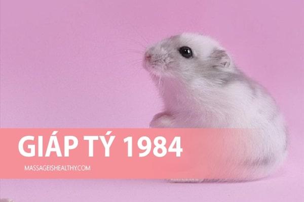 [Giáp Tý 1984] Sinh năm 1984 mệnh gì tuổi con gì, sinh năm 84 hợp hướng nào, hợp với tuổi nào?