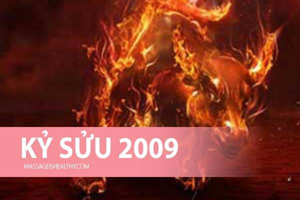 [Kỷ Sửu 2009] Sinh năm 2009 mệnh gì tuổi con gì hợp màu nào, sinh năm 2009 bao nhiêu tuổi?