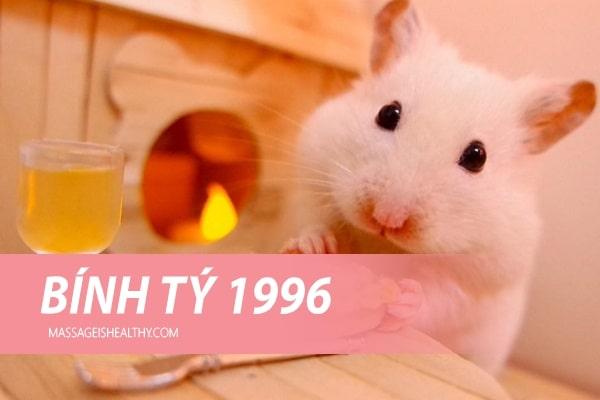 Sinh năm 1996 mệnh gì (sinh mệnh)?