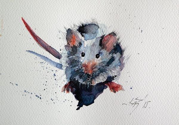 Mơ thấy chuột chạy thành đàn và chạy thành 1 hàng dọc sẽ cho thấy điềm báo hao tài tốn của