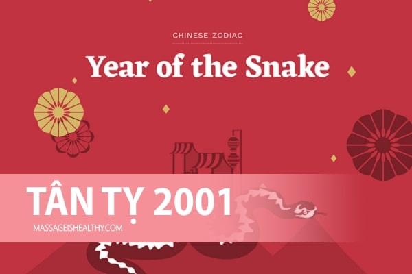 [Tân Tỵ 2001] Sinh năm 2001 mệnh gì tuổi con gì, hợp màu gì tuổi nào và 2001 bây giờ bao nhiêu tuổi?
