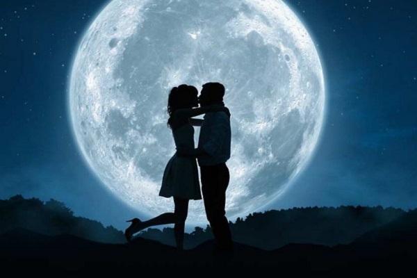 Sư Tử và Kim Ngưu có hợp nhau không, mức độ hợp cạ trong tình yêu và tình bạn ra sao?