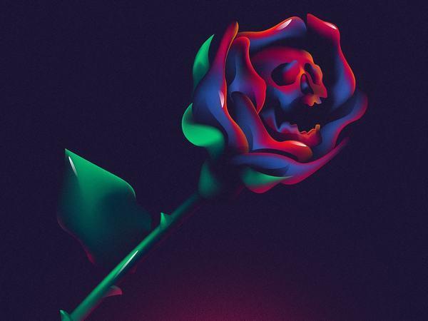 Ngủ nằm mơ thấy hoa hồng màu đỏ có ý nghĩa gì?