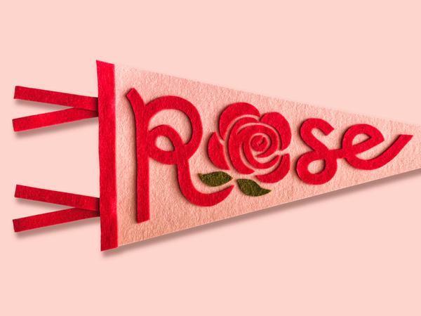 Nằm mơ thấy hoa hồng đánh con gì, số mấy chính xác?