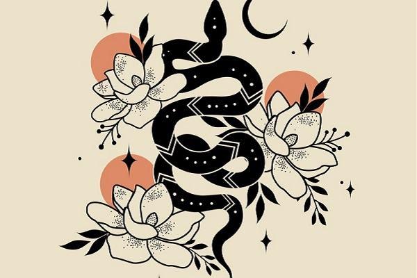 Nằm mơ thấy rắn đuổi đánh con gì, số mấy dễ trúng?