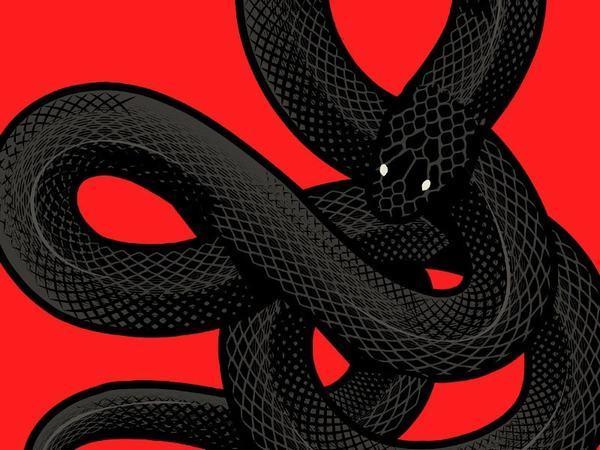 Nằm mơ thấy rắn đen đánh con gì, số mấy dễ trúng?