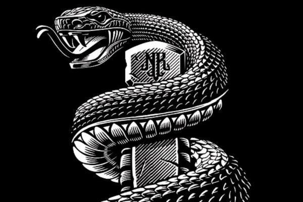 Nằm mơ thấy rắn đen đánh con gì, có điềm báo gì | Giải mã giấc mộng thấy rắn màu đen chi tiết và đầy đủ nhất