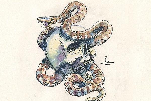 Nằm mơ thấy rắn đuổi đánh con gì, báo điềm gì | Giải mã giấc mơ bị rắn rượt đuổi theo mình