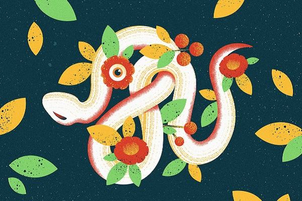 Giải mã mơ thấy rắn quấn chân tay, quấn quanh người, quấn cổ bạn hoặc tự quấn vào nhau toàn tập đầy đủ