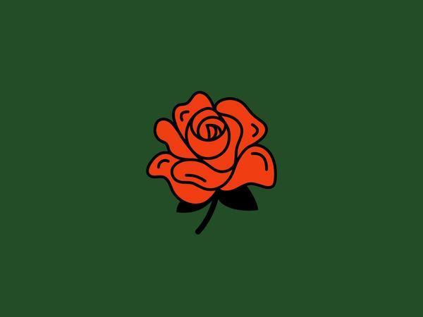 Ngủ nằm mơ thấy hoa hồng báo điềm gì?