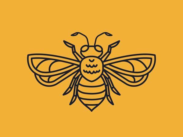 Ý nghĩa ngủ mơ thấy đàn ong đang bay