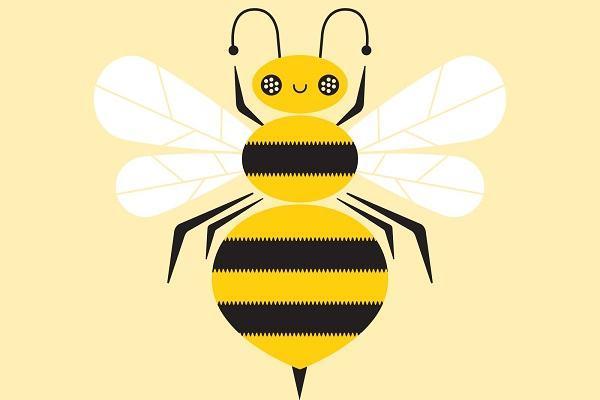 Giải mã nằm mơ thấy ong đánh con gì | Ngủ thấy ong đốt, ong đuổi chích, ong mật, ong vàng báo điềm gì?